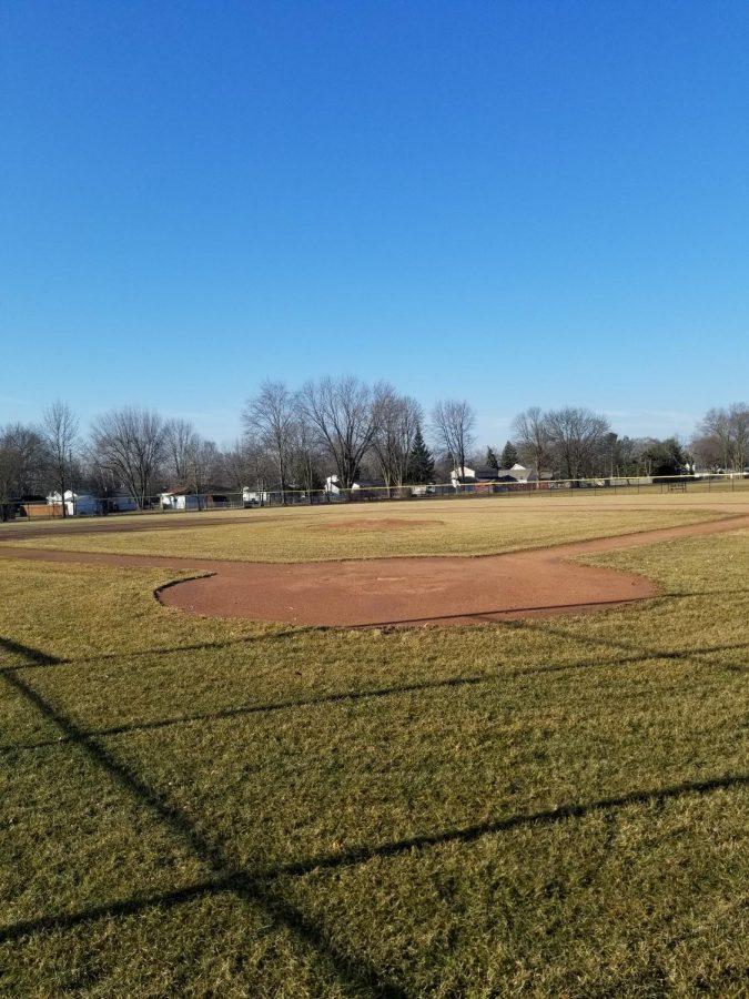 Baseball Swinging Back Into Action