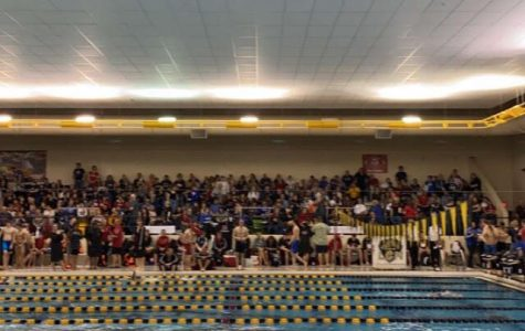 New Records; Controversy at Boys Swim County Championship
