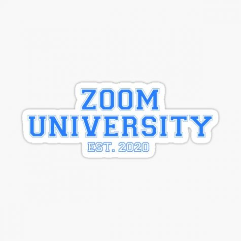 Students have to use platforms, such as Zoom, to complete their school year.