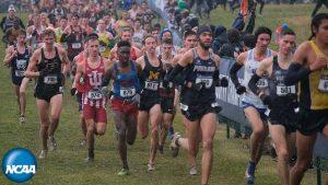 Top NCAA D1 Cross-Country runners run in the 2019 NCAA championship. Photo credit: NCAA