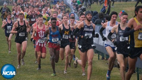 Top NCAA D1 Cross-Country runners run in the 2019 NCAA championship. Photo credit: NCAA